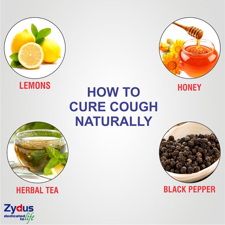 Seasonal changes are often accompanied by persistent cough which can sometimes be extremely unbearable and painful. These natural cough suppressants can effectively reduce and treat incessant coughing.  #ZydusHospitals #Ahmedabad #HealthTips #GoodHealth