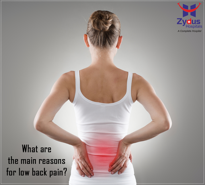 Poor body mechanics, sitting for prolonged hours, wrong body posture, some injury, and any occupation that involves a repetitive motion makes your body vulnerable to injury.  #BackPain #Reasons #HealthCare #ZydusHospitals #Ahmedabad
