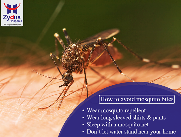 Protecting yourself from mosquito bites can help you avoid mosquito-borne illnesses such as malaria or dengue.  #HealthCare #ZydusHospitals #Ahmedabad