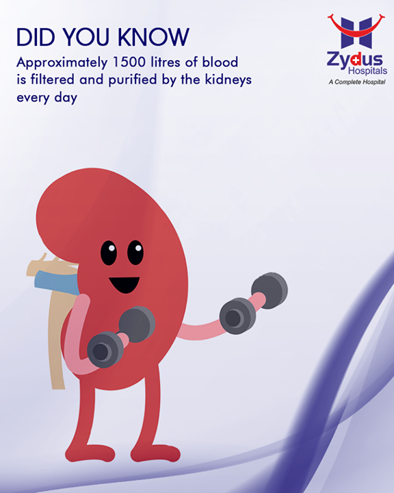 Imagine what would happen in case the kidneys don't function properly!  #StayHealthy #ZydusCare #ZydusHospitals #Ahmedabad #Gujarat