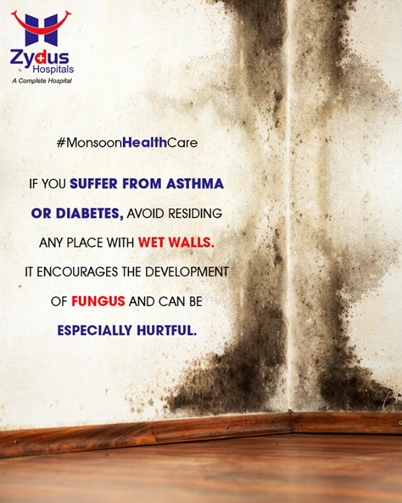 Wet walls are harmful during monsoon.   #Monsoon #StayHealthy #ZydusCare #ZydusHospitals #Ahmedabad #Gujarat