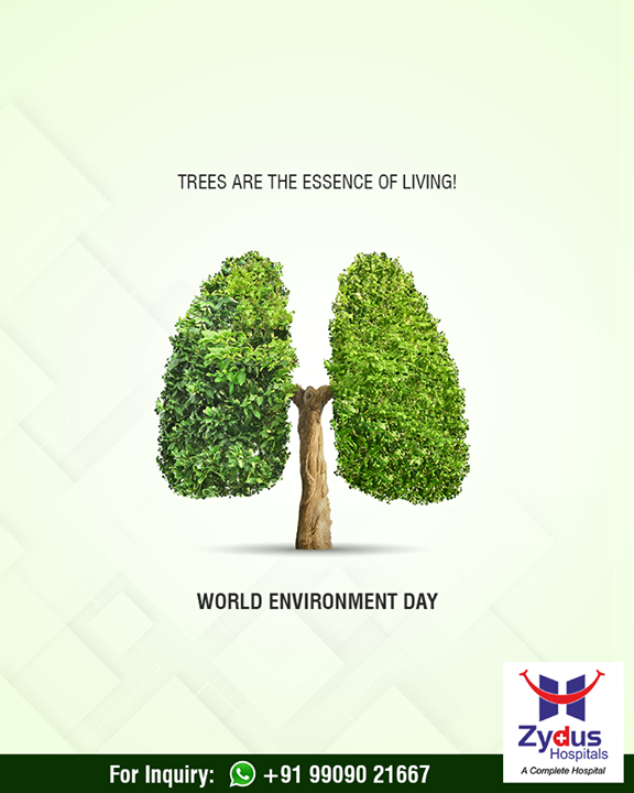 Trees are the essence of living!  #WorldEnvironmentDay #EnvironmentDay #EnvironmentDay2018 #ZydusHospitals #ZydusCares #Ahmedabad