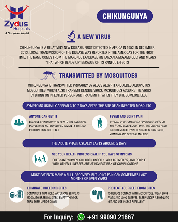 All you wanted to know about #Chikungunya! Stay safe this #Monsoon!  #ZydusHospitals #StayHealthy #Ahmedabad #GoodHealth