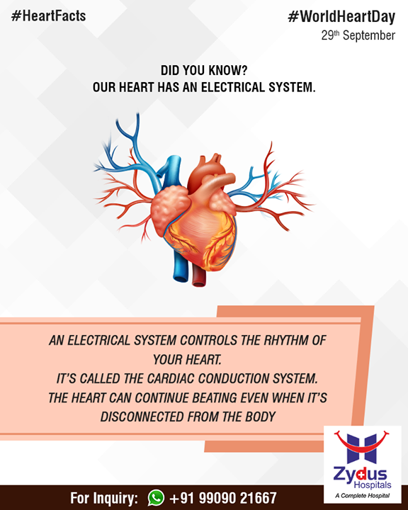 Did you know - our heart has an electrical system!  #ZydusHospitals #StayHealthy #Ahmedabad #GoodHealth #WorldHeartDay #HeartFacts