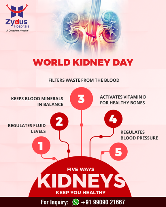 Importance of kidneys on #WorldKidneyDay!   #ZydusHospitals #Ahmedabad #GoodHealth #WeCare